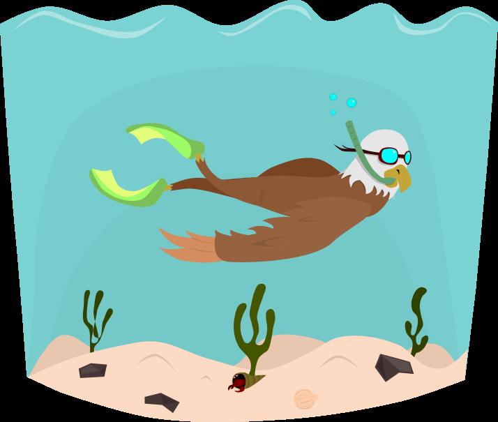 Aventuráguila Snorkeling