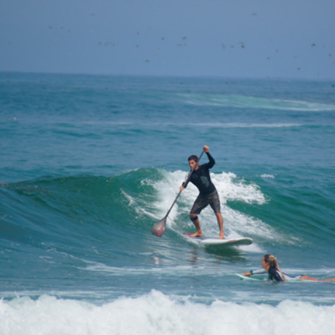 Aventura Stand Up Paddle Surf